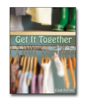 Get It Together book by Cindi Ferrini